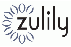 Zulily-Logo-300x200