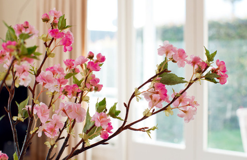spring cleaning how to redecorate your space on a budget