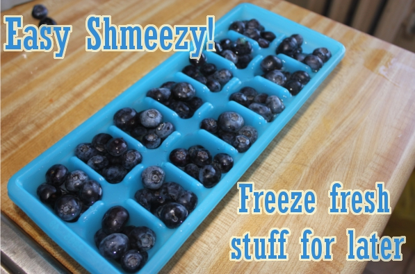 cheaper than Jamba Juice - freeze extra blueberries