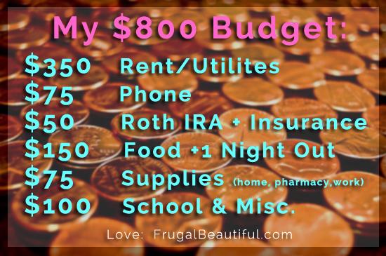 My 800 dollar budget