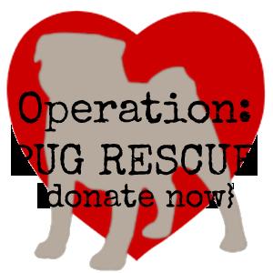 Operation Pug Rescue
