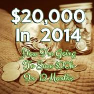 $20k in 2014:  March Progress