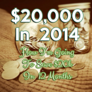 Crazy New Year Goals: How I'm Saving $20,000 in 2014