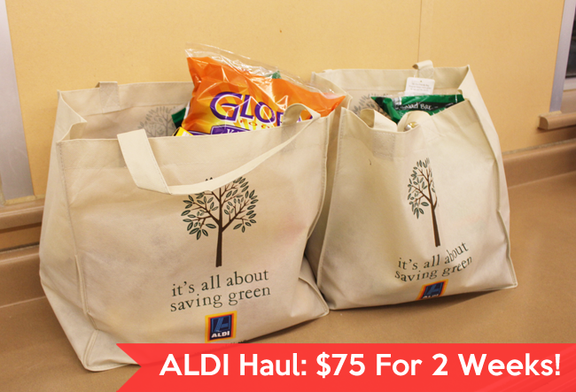 ALDI Haul - How to Get 2 weeks of groceries for $75