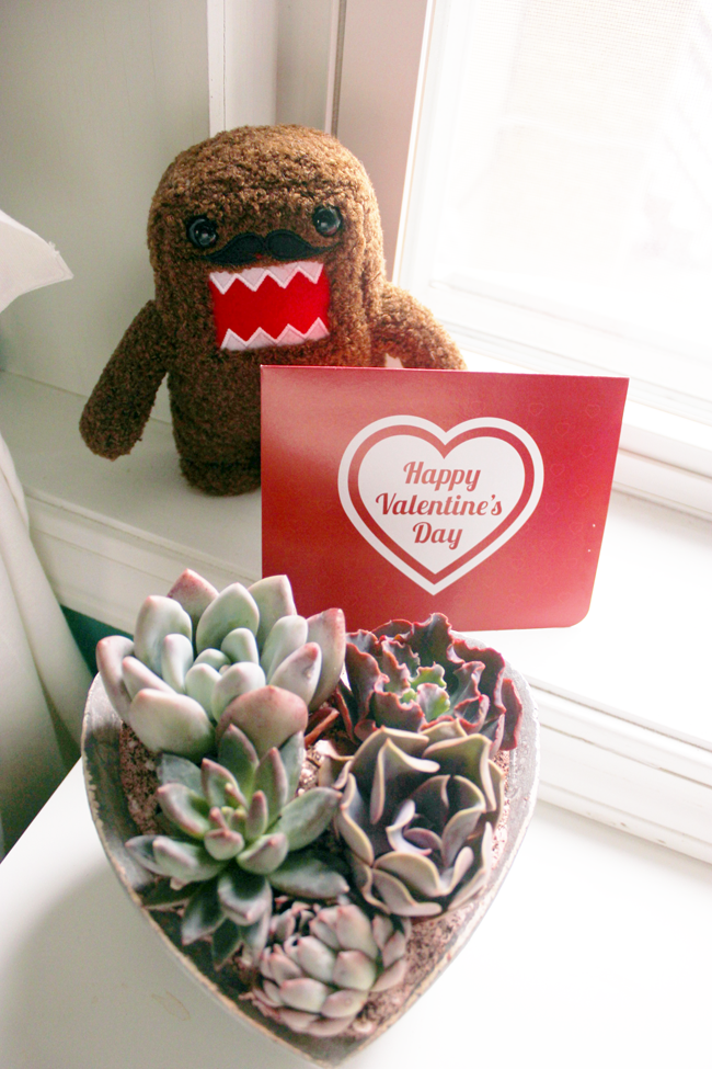 Domo and Proflowers Flower Delivery