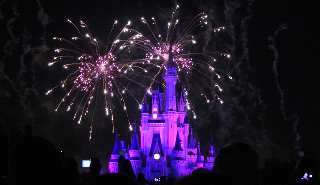 Magic Kingdom Fireworks… awww.