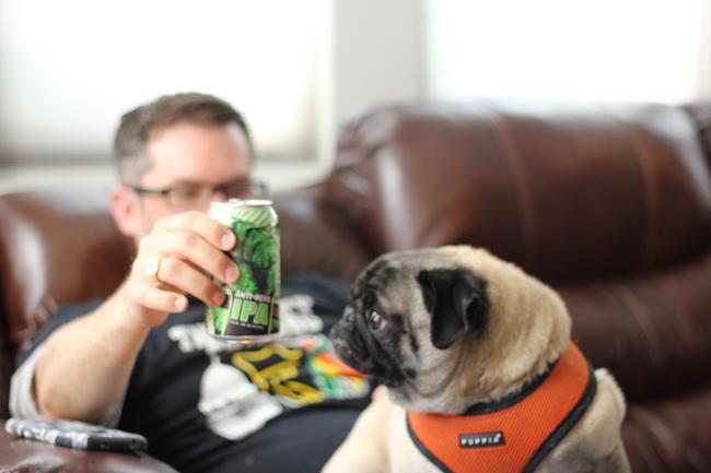 Pugs Like Beer