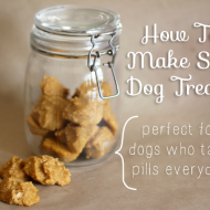 How To Bake Soft Dog Treats (Great For Dogs Who Take Pills)