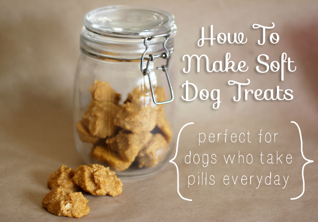 How To Bake Soft Dog Treats That Are So Tasty Your Dog Won't Notice Their Pills Are Hiding Inside