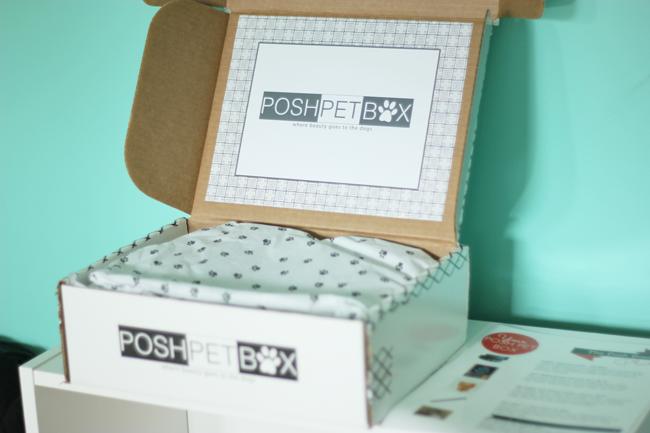 Posh Pet Box Review -Frugalbeautiful.com
