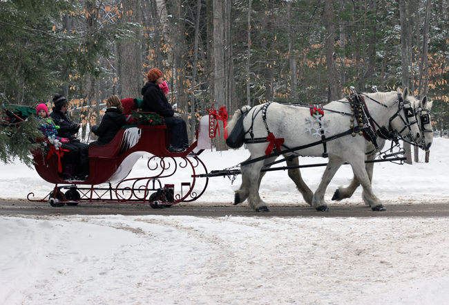 Sleigh Rides are an awesome treat for winter fun in Traverse City Michigan