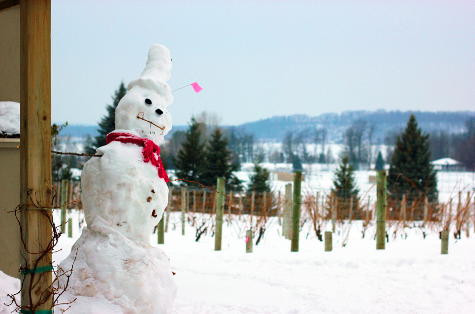Visiting Traverse City Michigan in Winter- Stop by the many wineries. (This is Bowers Haror Vineyards, we loved it!)