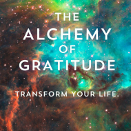 The Alchemy Of Gratitude: Turning Opposition Into Opportunity