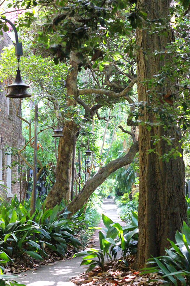 Hidden Gems in Charleston South Carolina