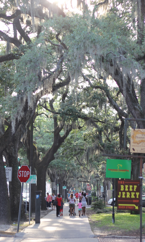 Savannah- a beautiful and fun place for girlfriends and families to visit. One of my favorite places!