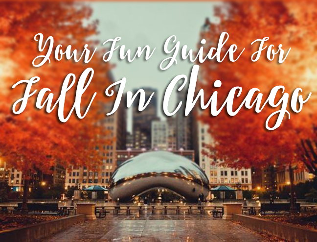 Fall is the BEST in Chicago! Your guide to the best fall things to do and activities in Chicago to celebrate the autumn season!