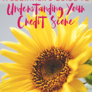 A Beginner's Guide To Understanding Your Credit Score