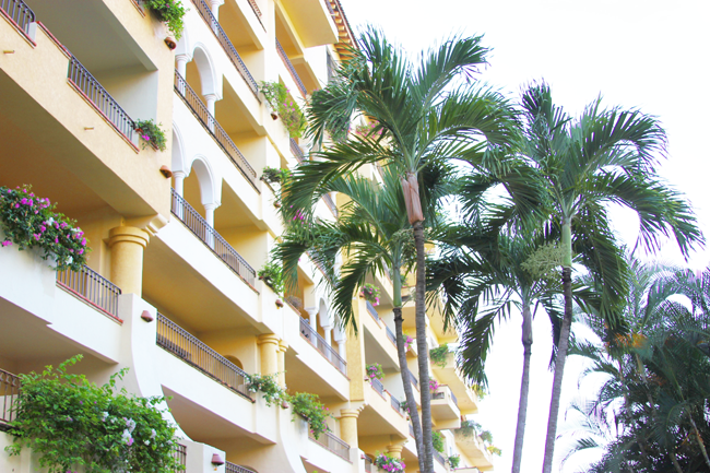 The Velas Vallarta Resort Review