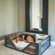 10 DIY Décor Projects for Dog Owners