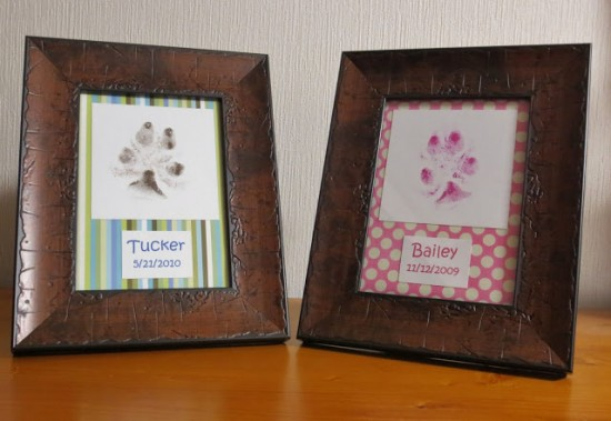 dog framed paw print