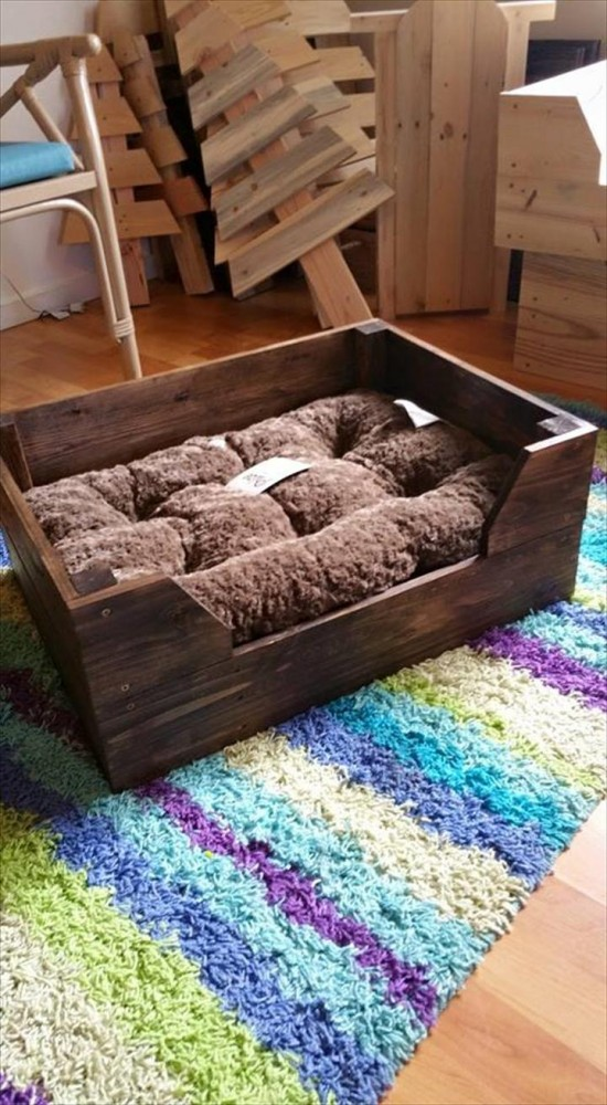 While having a pup is a huge commitment (albeit a very lovable one), these décor crafts are perfect projects for dog owners new to pet ownership!