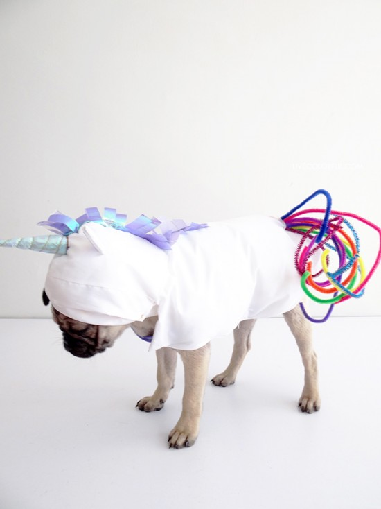 Cute Diy Dog Costumes: Ten Dangerously Adorable DIY Dog Costumes