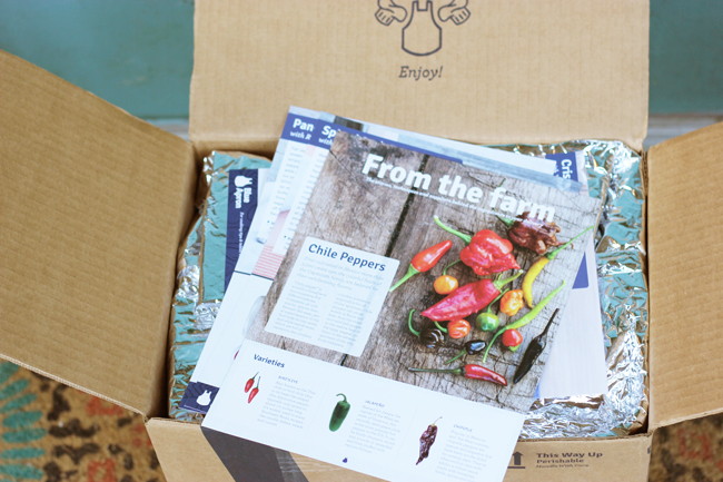 blue-apron-food-delivery-review