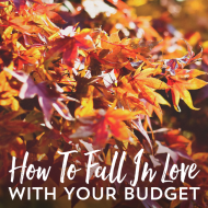 How To Fall In Love With Your Budget