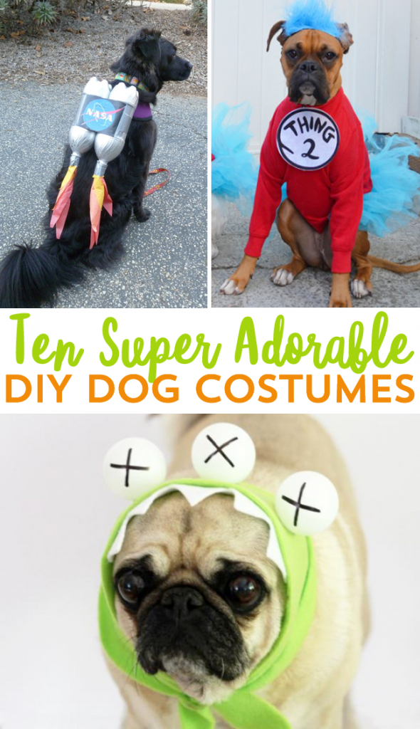 Ten dangerously adorable diy dog costumes frugal beautiful love halloween so much that you just have to include your pooch friend we solutioingenieria Choice Image