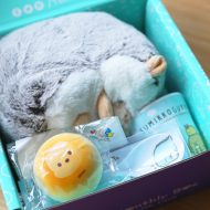 Yume Twins Subscription Box Review